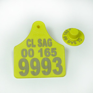 C03040